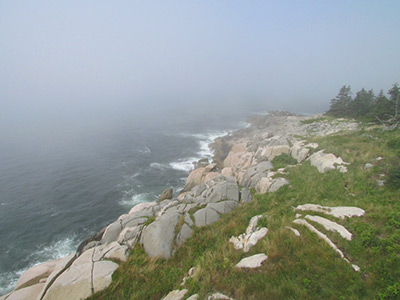 Fog at Heron Neck